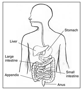 Exeter hospital colonscopy how is colonoscopy performed ccuart Images